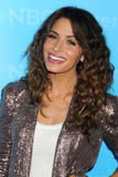 Сара Шахи, фото 470. Sarah Shahi NBC Universal Winter Tour All-Star Party in Pasadena - 06.01.2012, foto 470